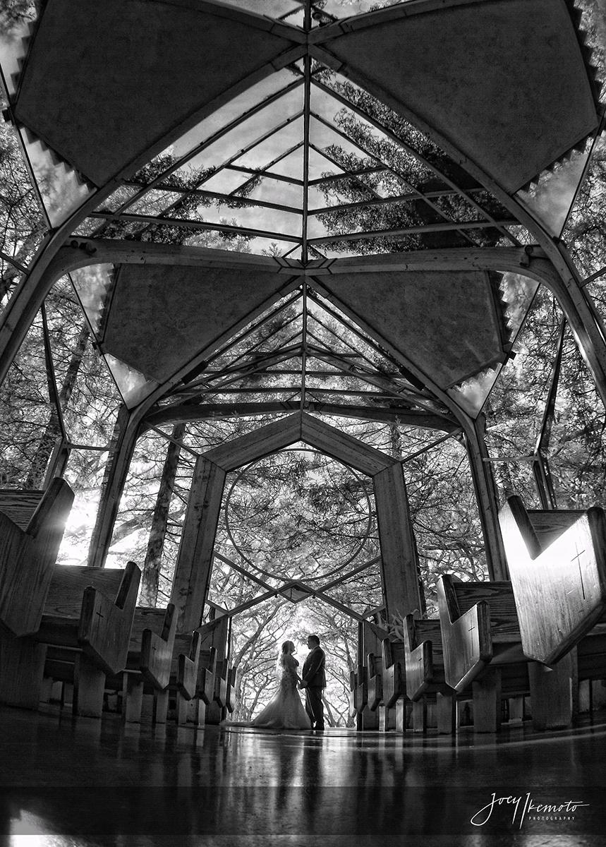 Wayfarers-Chapel-and-Redondo-Beach-Library-Wedding_0028_1775