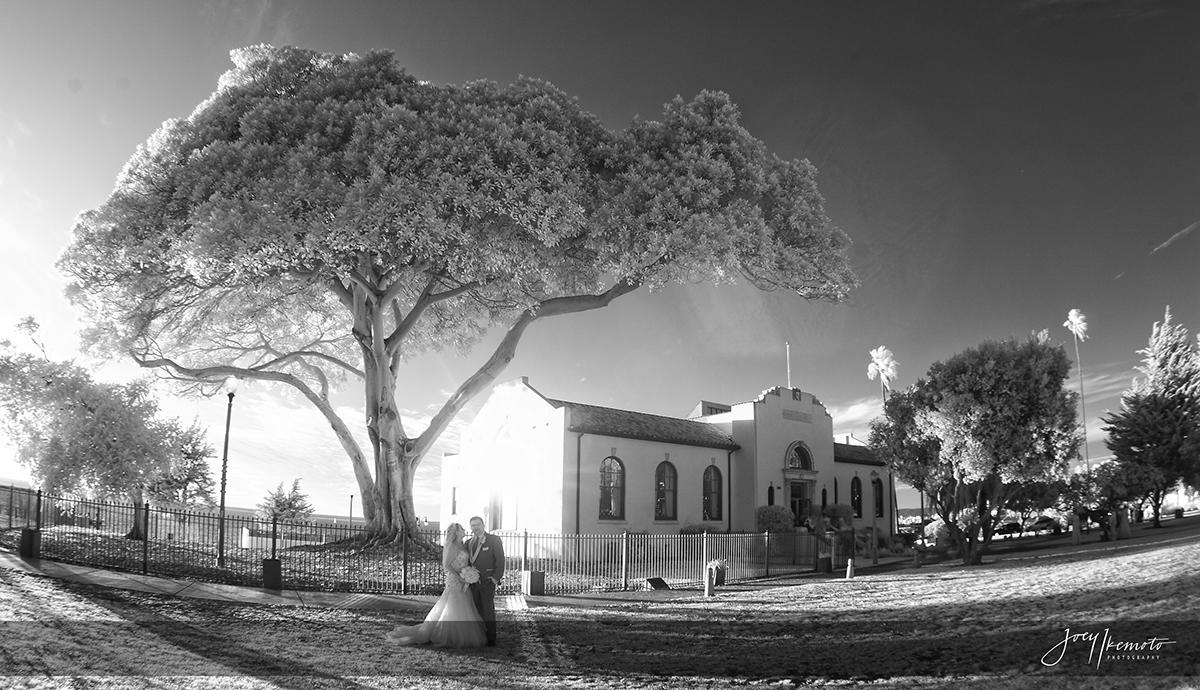 Wayfarers-Chapel-and-Redondo-Beach-Library-Wedding_0045_2337