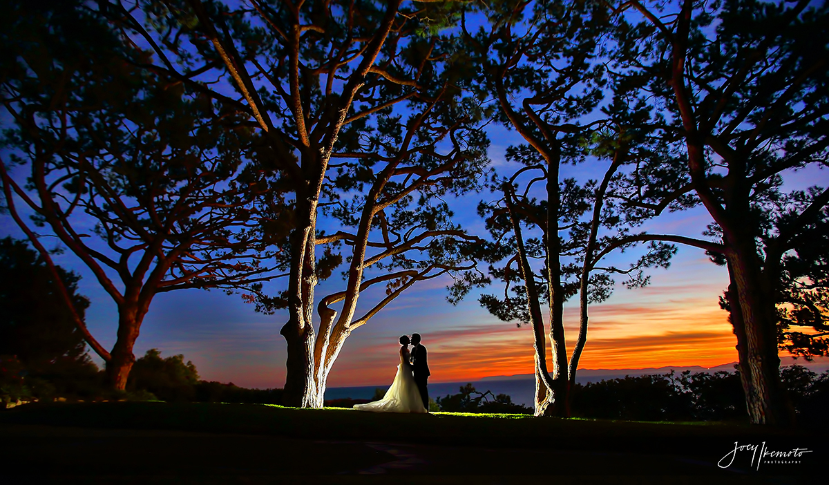 Wayfarers-Chapel-and-Roys-Restaurant-Newport-Beach-Wedding_0022_1246
