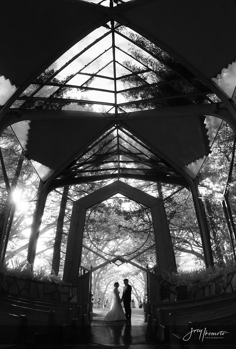 Wayfarers-Chapel_0023_1655