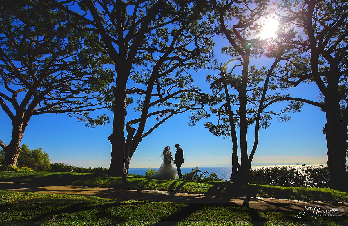 Wayfarers-Chapel-Wedding-Palos-Verdes_0030_1389