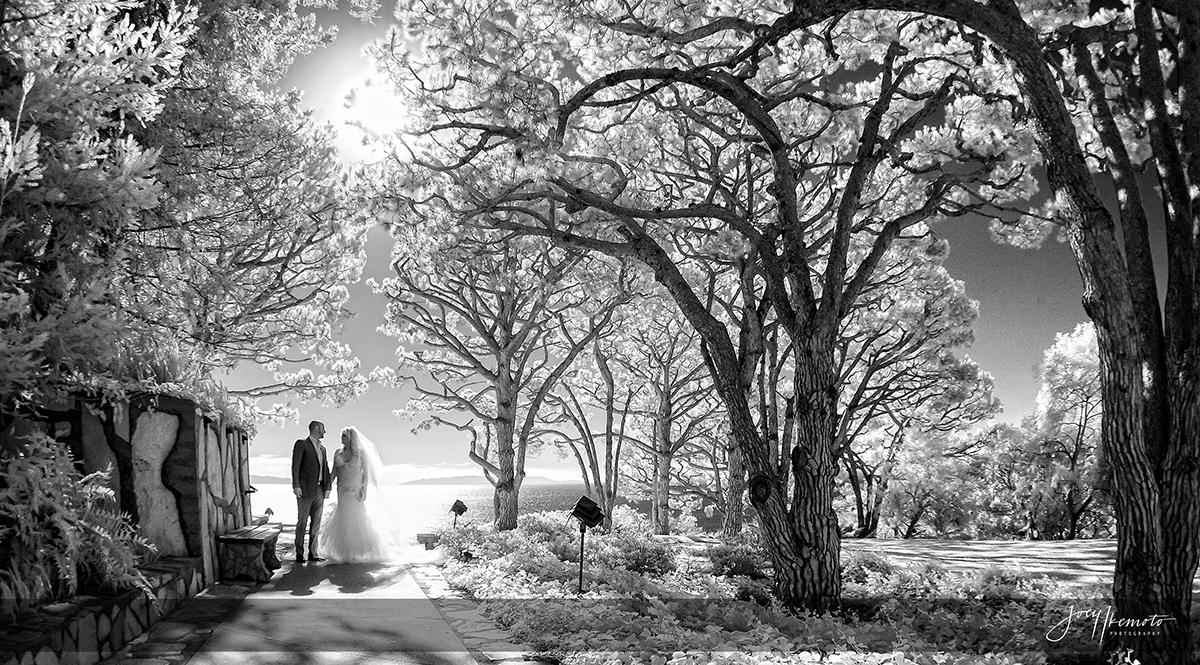 Wayfarers-Chapel-Wedding-Palos-Verdes_0039_1548
