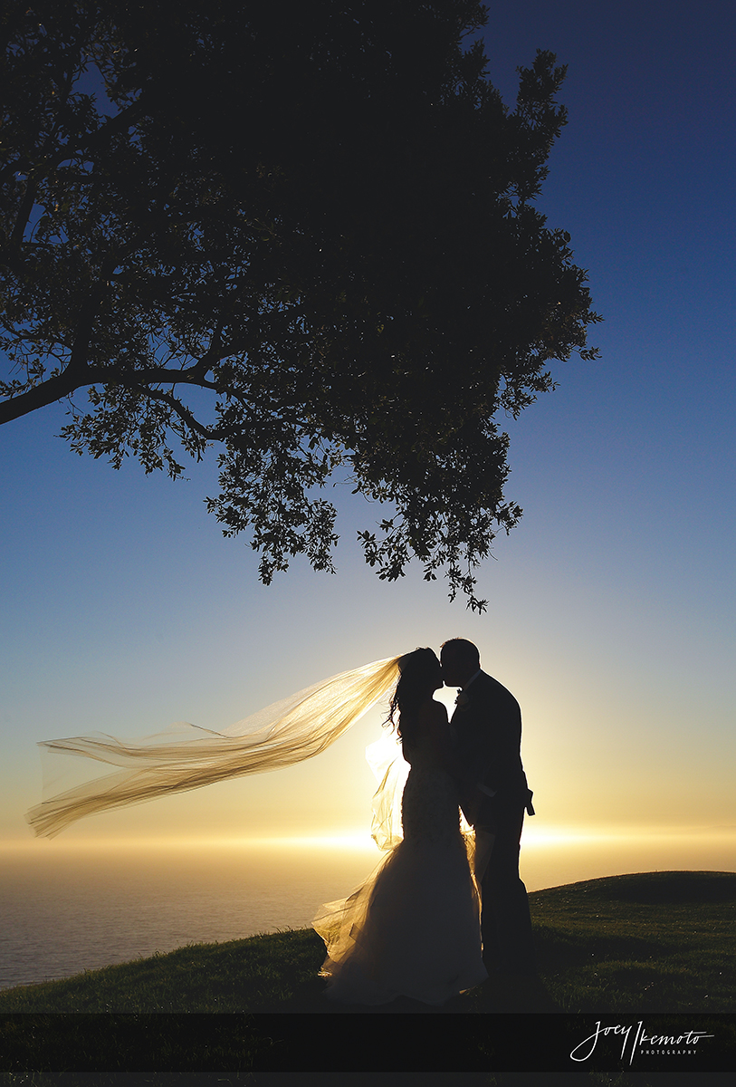 Terrena-Resort-Palos-verdes-and-La-Venta-Inn-Wedding_0044_3198