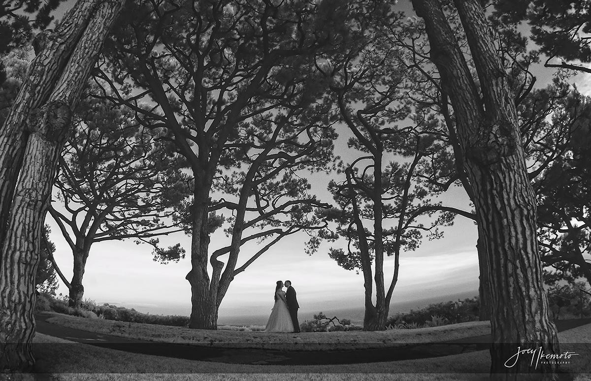 Wayfarers-Chapel-Palos-Verdes-Wedding_0015_0878