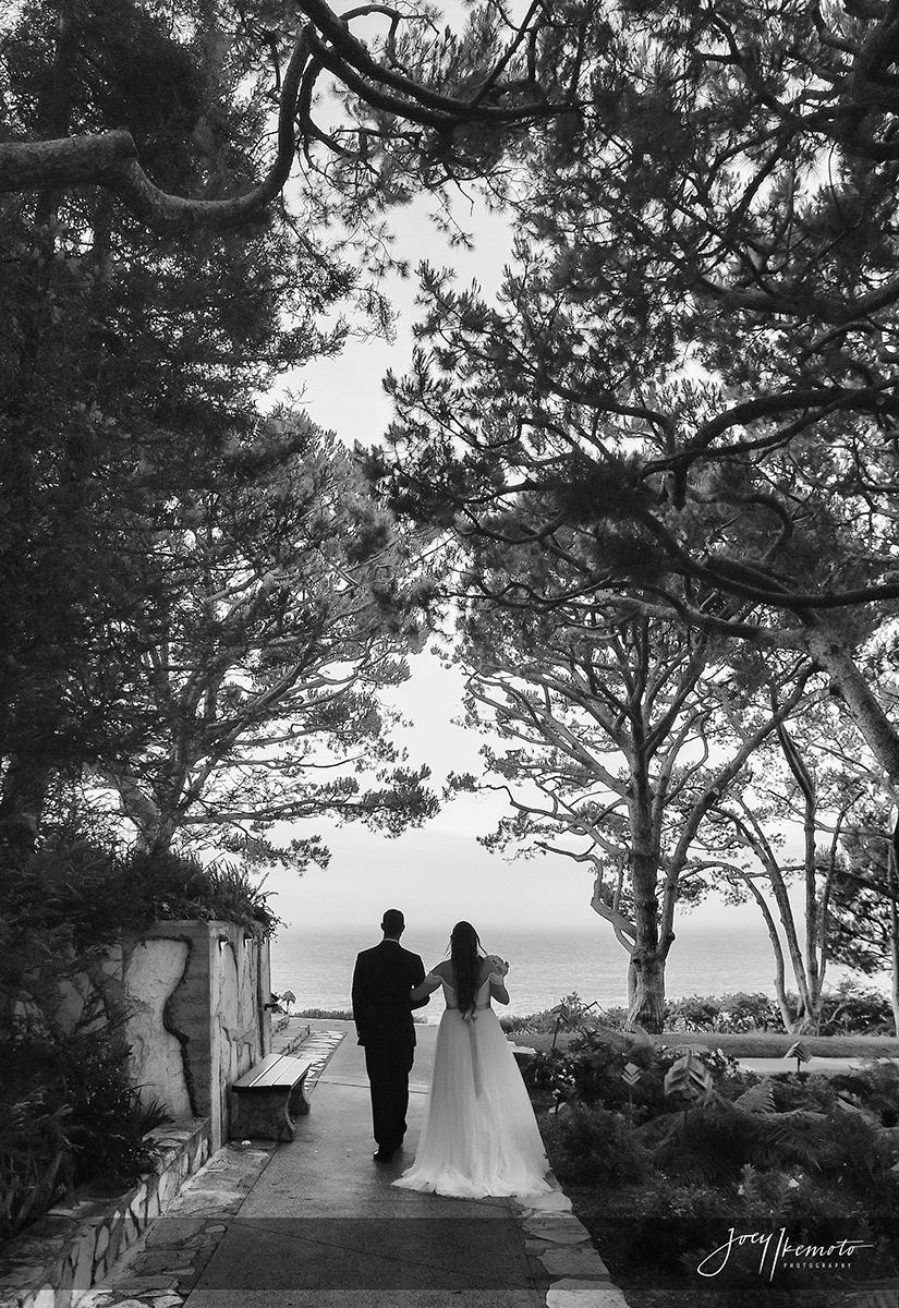Wayfarers-Chapel-Palos-Verdes-Wedding_0023_1697
