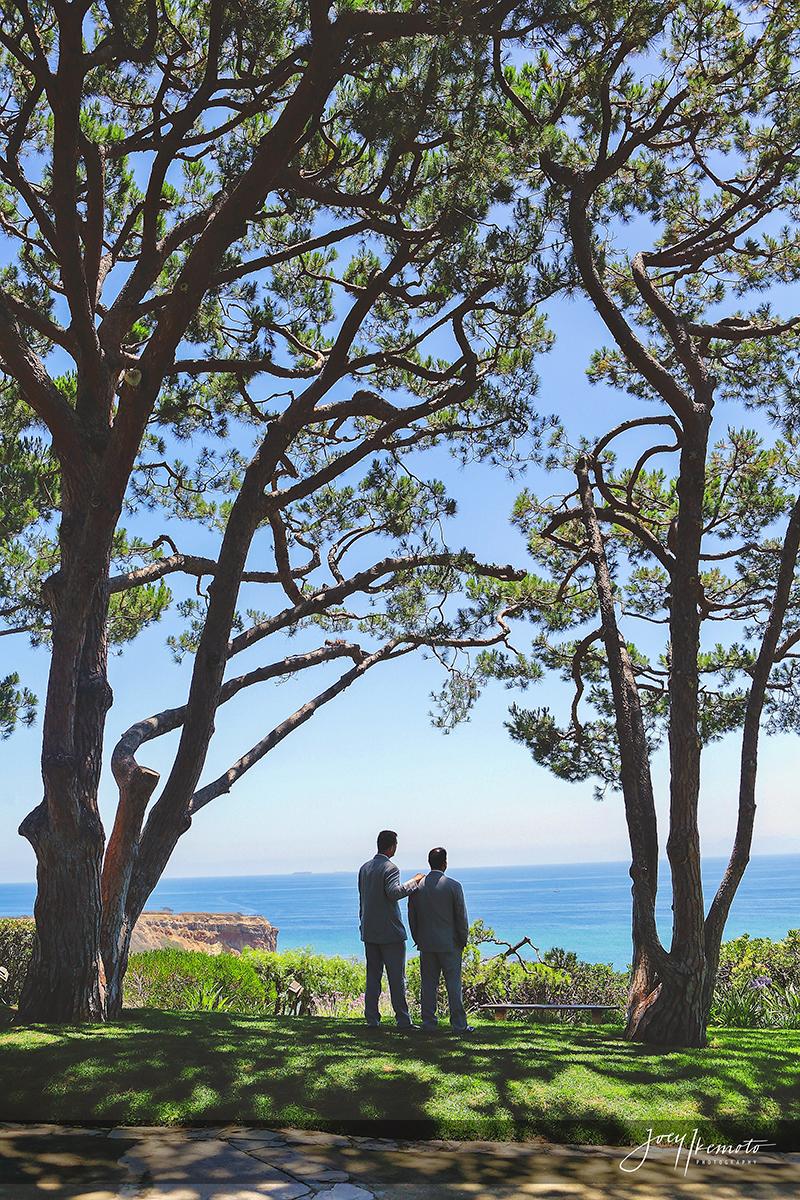 Wayfarers-Chapel-and-Palos-Verdes-Wedding_0008_0843