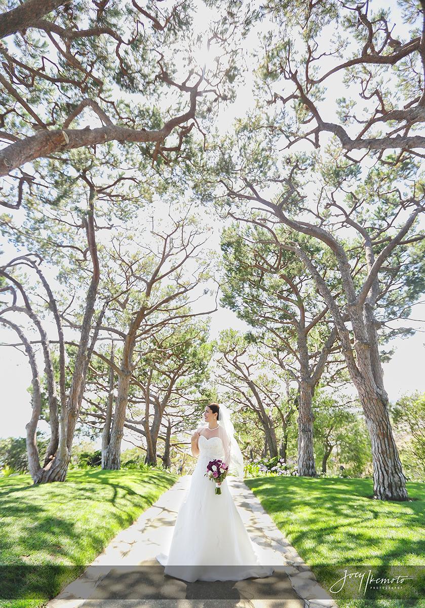Wayfarers-Chapel-and-Palos-Verdes-Wedding_0024_1774