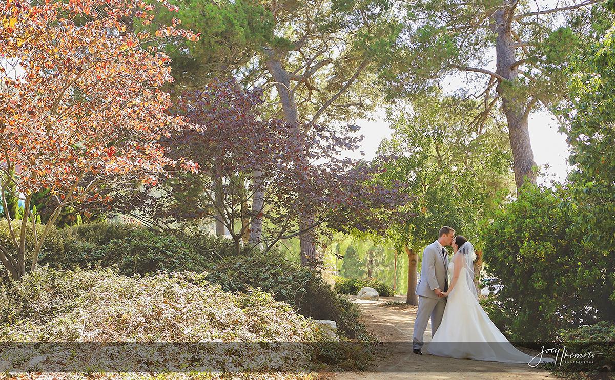 Wayfarers-Chapel-and-Palos-Verdes-Wedding_0033_2148