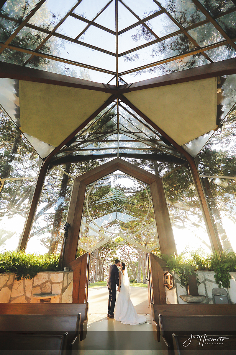 Wayfarers-Chapel-and-Portofino-Redondo-Beach-Wedding_0021_2028