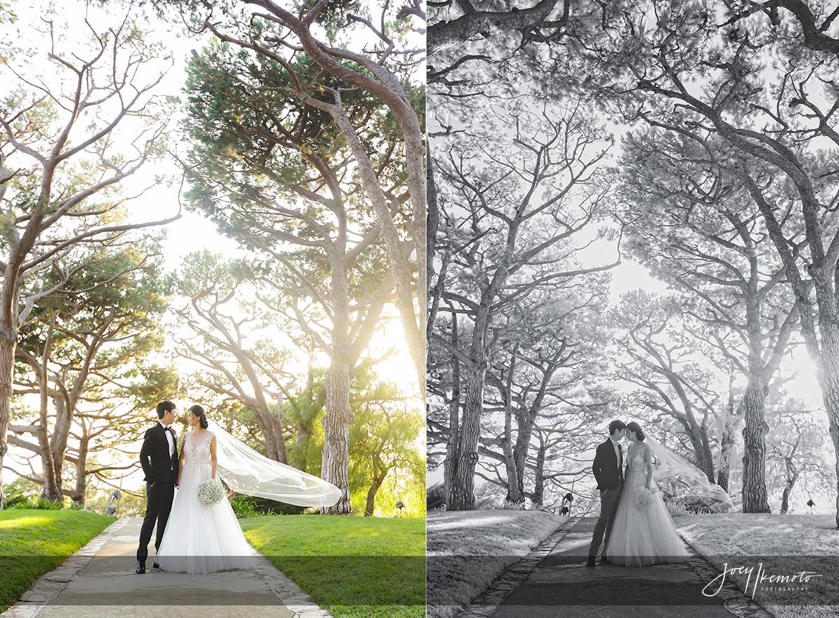 wayfarers-chapel-palos-verdes-wedding_0093_blog-collage-1475168755388