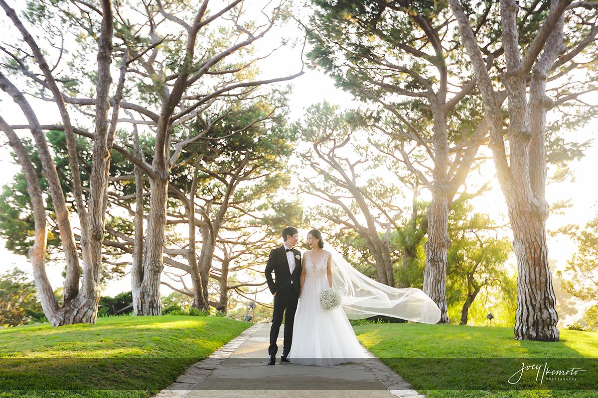 wayfarers-chapel-palos-verdes-wedding_0094_2229