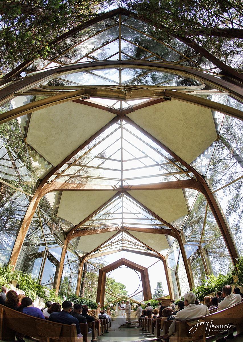 wayfarers-chapel-palos-verdes-and-the-green-onion-san-pedro-wedding_0083_1426
