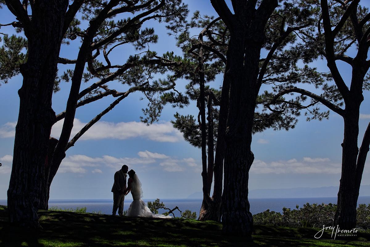 wayfarers-chapel-palos-verdes-and-the-green-onion-san-pedro-wedding_0093_1803