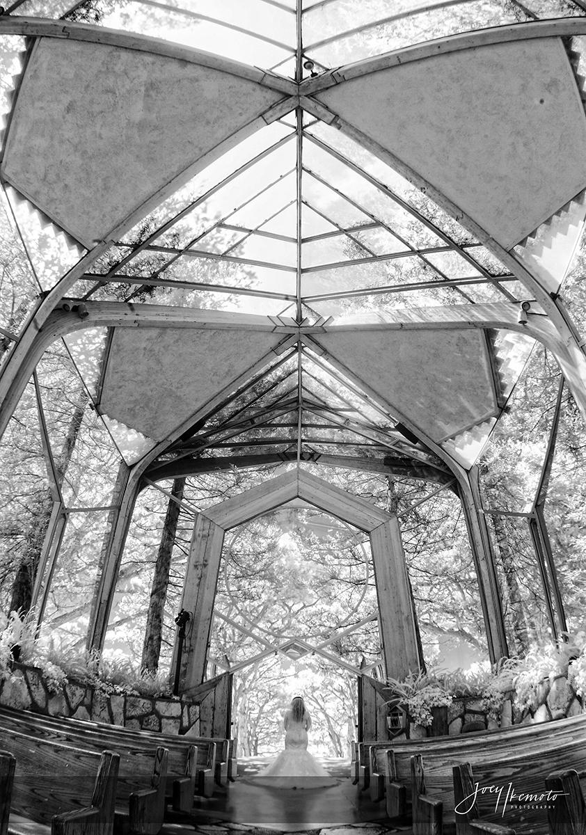 wayfarers-chapel-palos-verdes-and-the-green-onion-san-pedro-wedding_0096_1899