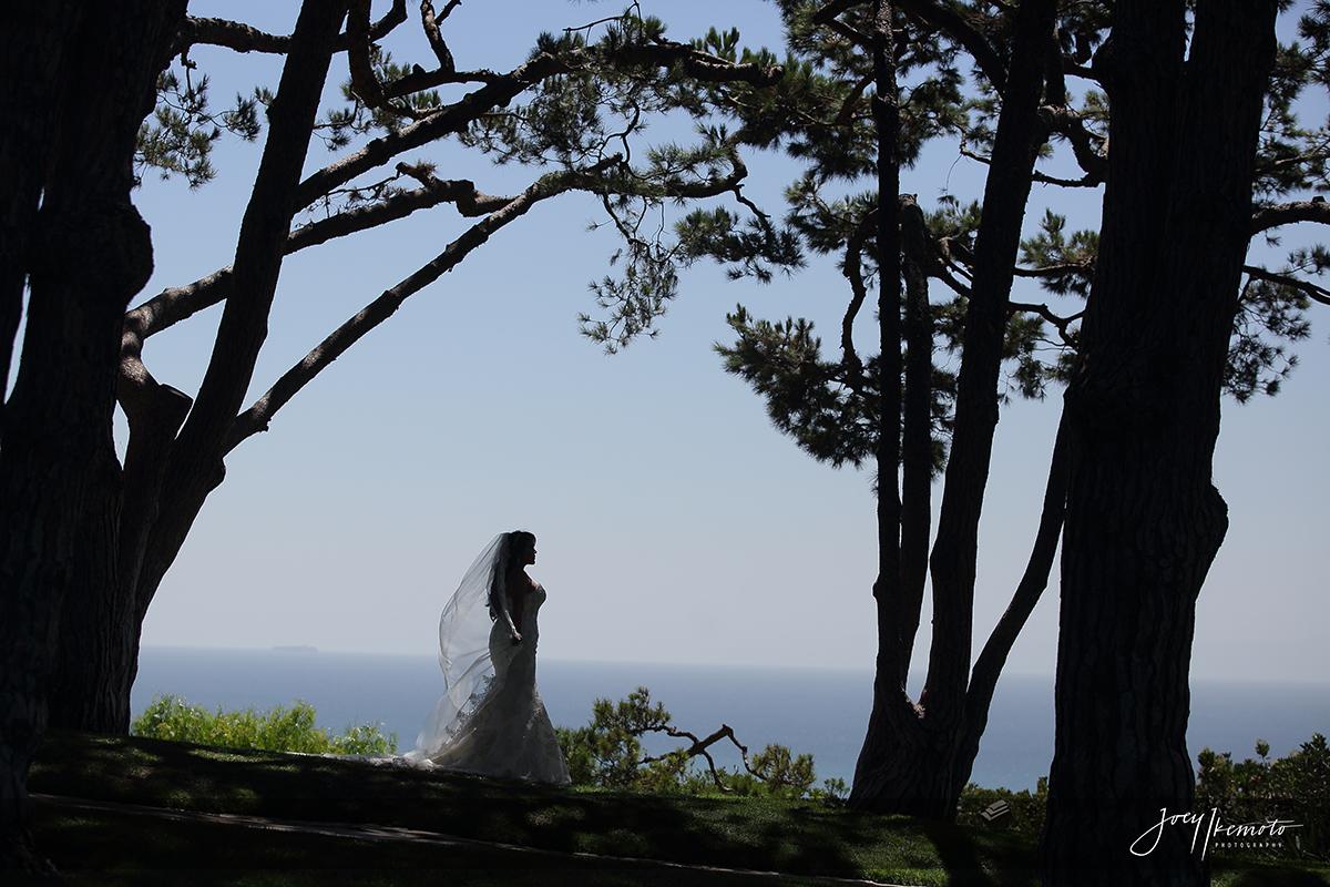 wayfarers-chapel-palos-verdes-and-micheals-tuscany-room-san-pedro-wedding_0027_1378
