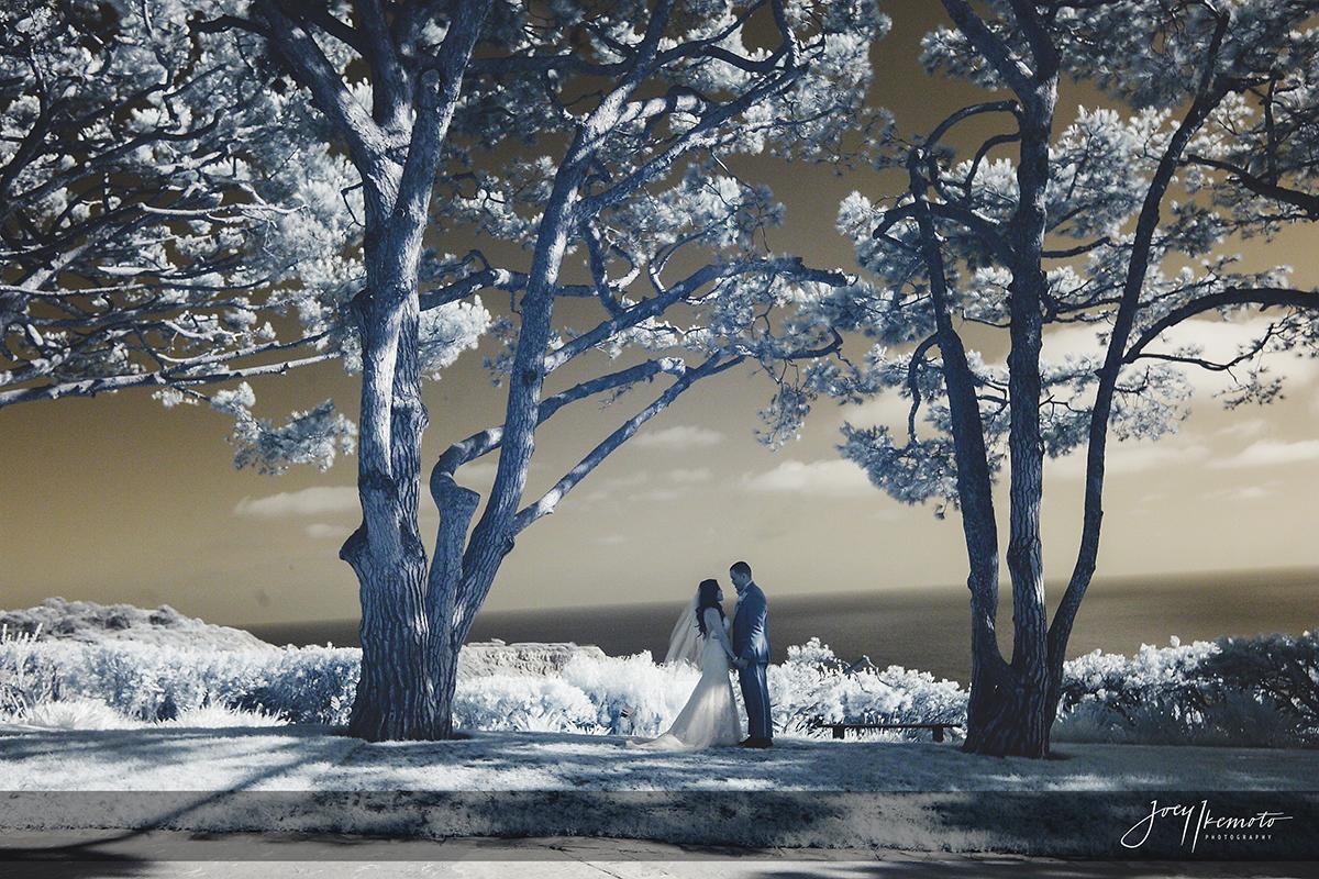 wayfarers-chapel-and-la-venta-inn-palos-verdes-wedding_0093_2200