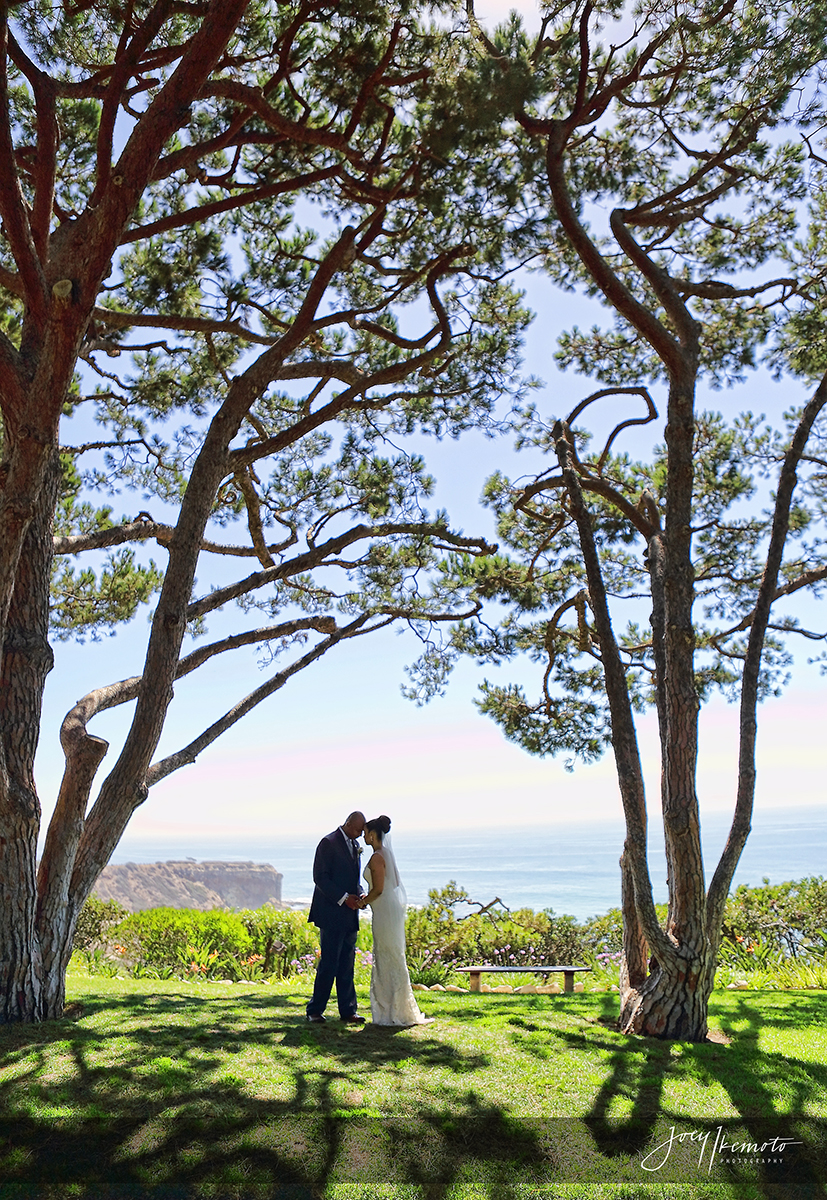 wayfarers-chapel-and-marsel-terranea-resort-wedding_0026_1505