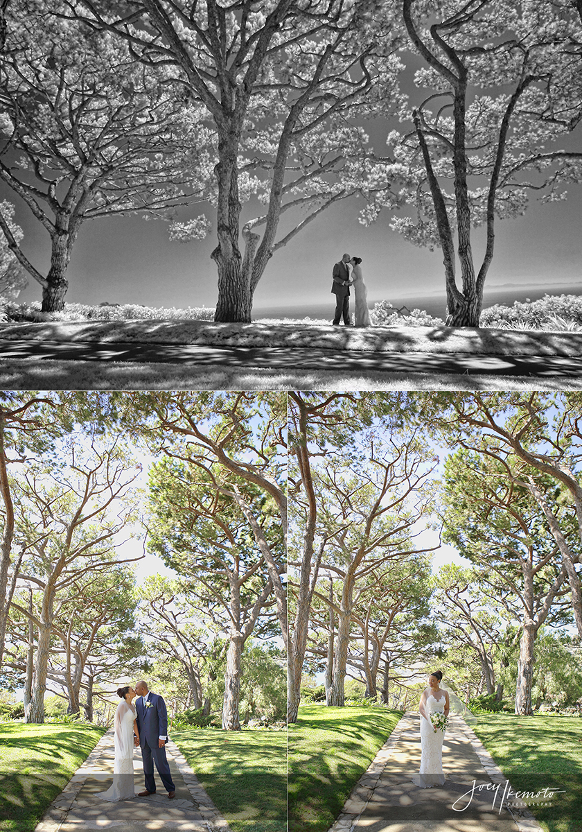 wayfarers-chapel-and-marsel-terranea-resort-wedding_0027_blog-collage-1477527889155