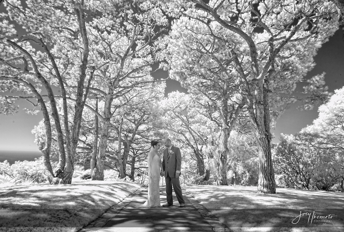 wayfarers-chapel-and-marsel-terranea-resort-wedding_0028_1560