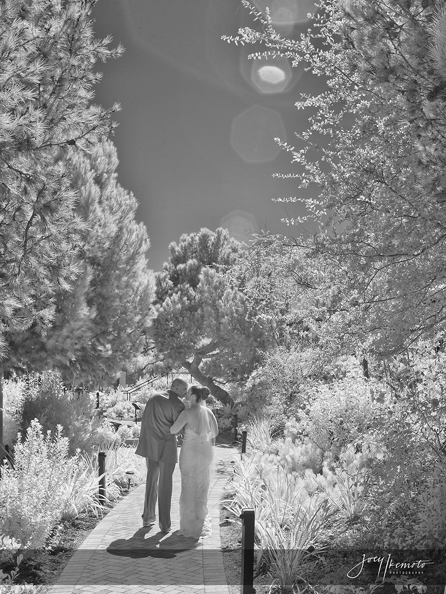 wayfarers-chapel-and-marsel-terranea-resort-wedding_0041_2127